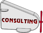 Consulting Expert Witness